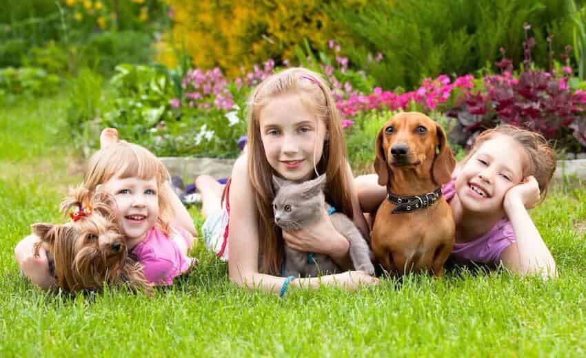 Three children with pets on the grass